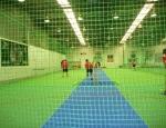 20121126 cricket
