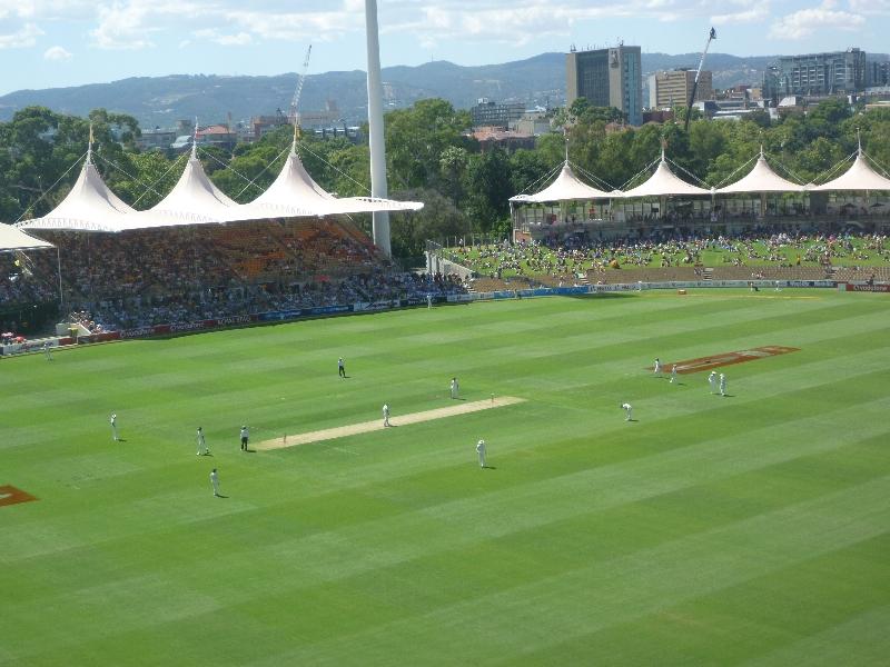 20120124 cricket