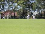 20120217-cricket