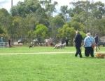 20120129 dog park