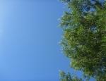20120212 sky