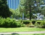 20120223 parklands